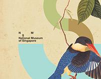 BIRD. NSM