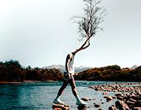 Growth - Photo Manipulations
