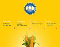 [POLAR] propuesta website Harina P.A.N,