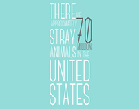 Stray Animal Motion Infographic