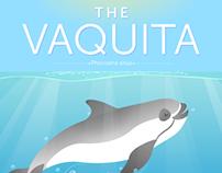 The vaquita