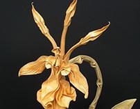 Dancing Lady Orchid (Psychopsis Krameriana)