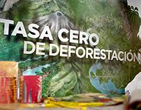 Ministerio de Ambiente Reforestación