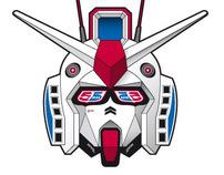 Logo 55DSl