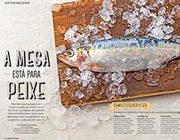 Revista Bons Fluidos - Sustentabilidade