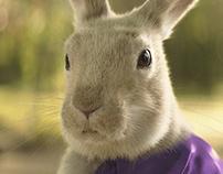 """Cadbury """"Easter Bunny"""""""