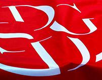 DDSG Logo