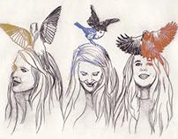 Hopes & Birds