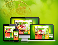 Pak Horti Fresh | Website and Branding