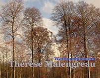 Weihnachtsbaum Thérèse Malengreau piano