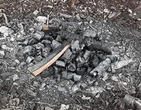 Burned Logs and Ashes (3D model)