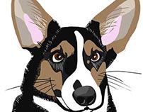 Portrait of Hazel the Dog