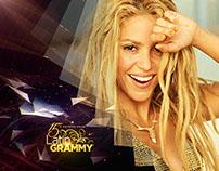 Latin Grammy 2014 Style Frames