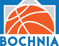 Basketball logo for local team.