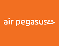 airpegasus.in