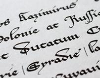 Historical hand study I: XIV-th century cursive