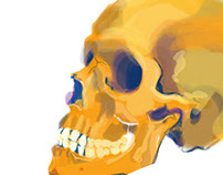 Skull Illustrations