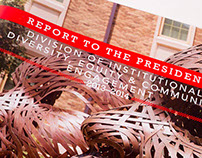 Texas Tech Diversity Report to the President
