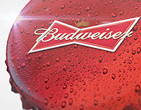 Budweiser Alouettes in 24 hours