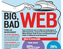 disadvantages of web