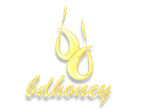 LOGO DESIGN : BDHONEY