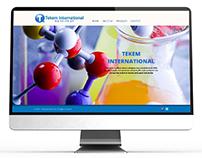 tekemint.com web sitesi