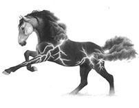 Equine Elements