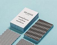 Seb Lecocq - brand identity and website design