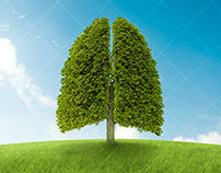 Concept green