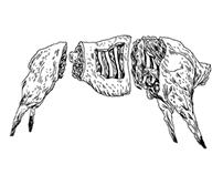 MEAT - illustrations for Utblick magazine