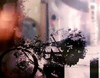 2014 Rosner / Crom (Gottheit)