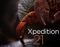Xpedition Music Mix 21