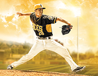 2016 Salt Lake Bees Season Tickets