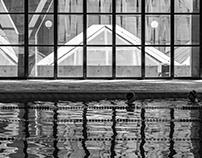 B&W Swimming