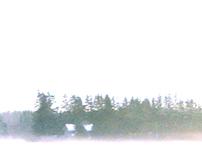 Licht op het noorden