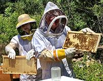 Beekeeper's Revenge-Student Film Class - USC