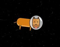 404 CSS Animated -http://404.lucasdebelder.be/