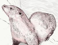 Hi, Otter (2K18)