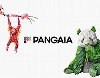 The Pangaia