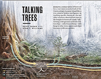 Talking Trees, a project for National geographic