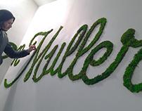 Vegetal Typography | Maison Muller