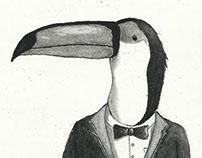 Classy Birds