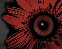 Black Eyed Susan Movie Poster
