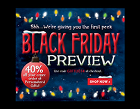 Holiday Web Banners and E-blast Ads