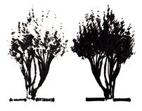 Fall Sketches - Santa Fe '14
