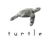Turtle Branding