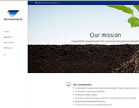 EMF Consulting website facelift