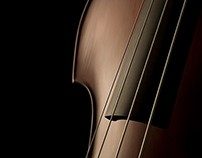 The Art of String Instruments