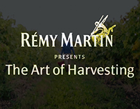 Remy Martin / The Art of Harvesting