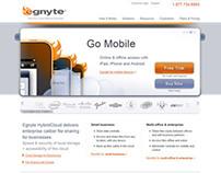 Egnyte website